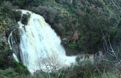 הגשמים חידשו את זרימות המים בנחלים.ברשות הכינרת ממליצים על טיול:מפלים וזרימות המים בשמורת עיון