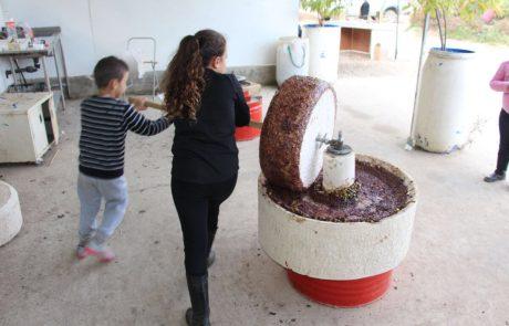 """פסטיבל """"חנוכה-חג שמן הזית הישראלי"""" יתקיים השנה בסימן הצדעה ליישובי הדרום ויישובי עוטף עזה"""